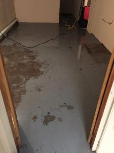 Commercial Restoration Wet Floor