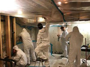 911 Restoration-Mold Removal -Ventura County